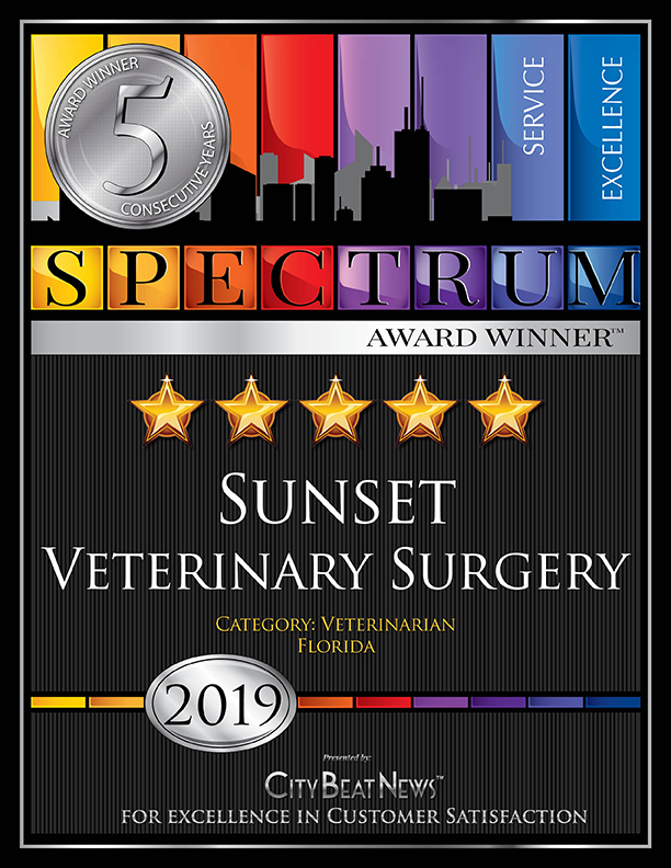 CBN 2019 Sunset Veterinary Surgery 5YEAR 2550x3300